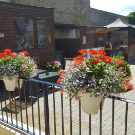 Belle Vue Tavern Pegwell Bay in Bloom 4